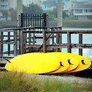 Four Yellow Surfboards by Cynthia48