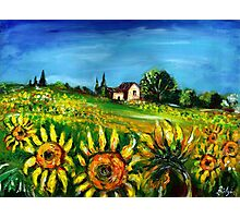 SUNFLOWERS AND COUNTRYSIDE IN TUSCANY Photographic Print