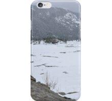 elk eating in moraine park iPhone Case/Skin