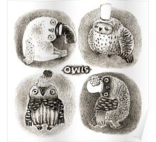 Four Pastel Owls in Funny Hats Poster