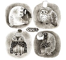 Four Pastel Owls in Funny Hats Photographic Print
