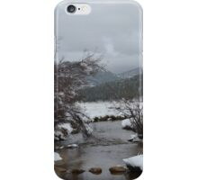 creek in moraine park iPhone Case/Skin