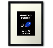 Gaming Facts Spin Dash Framed Print