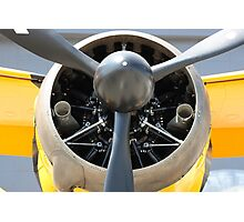 Bristol Mercury XX(X) 870 hp engine and propeller of Army Co-operation single engine Westland Lysander III aircraft. Photographic Print