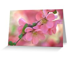 Spring Love Greeting Card