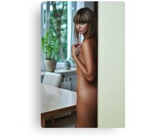 sexy nude erotic glamour girl model 17 Canvas Print