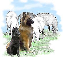 Belgian Terv and sheep by IowaArtist