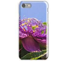 Purple Passion Flower  iPhone Case/Skin