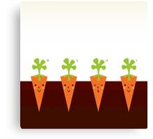 Sweet Carrots growing in dark Soil Canvas Print