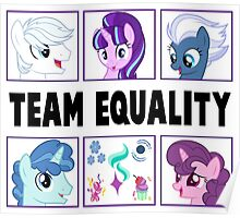 TEAM EQUALITY - CLEAR BOXES VERSION Poster