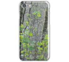 Earth Forest iPhone Case/Skin