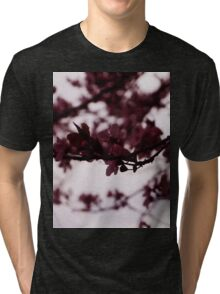 Japanese Cherry Tree Tri-blend T-Shirt
