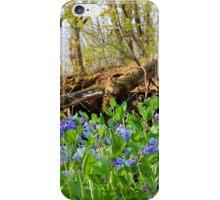 Forest Landscape iPhone Case/Skin