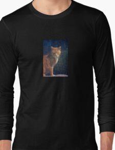 Observing Long Sleeve T-Shirt
