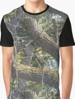 V Maple Branch Graphic T-Shirt