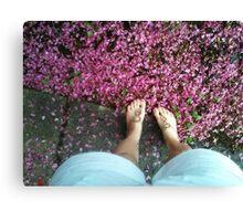 Blossom Petals.  Canvas Print