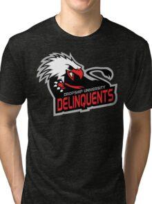 Dropship University Deliquents Tri-blend T-Shirt