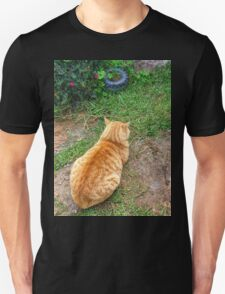 When your cat is angry with you. T-Shirt