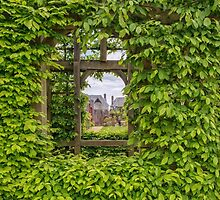 Arundel Castle, window in the garden wall by Pauline Tims