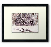 Bear Lake, Colorado _ American Cutouts Framed Print