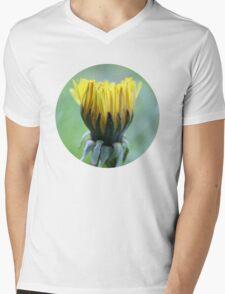 Dandelion - 2009 Mens V-Neck T-Shirt