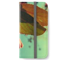 Afternoon Delight iPhone Wallet/Case/Skin