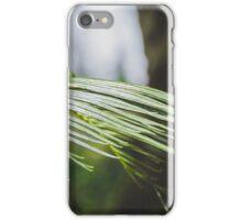 Palm Tree 4 iPhone Case/Skin