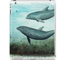 Two Inshore Dolphins iPad Case/Skin