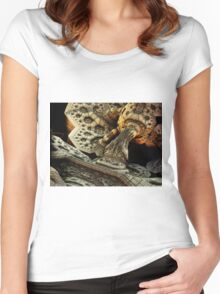Fractal Fossils Women's Fitted Scoop T-Shirt