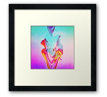 Fountains. Framed Print