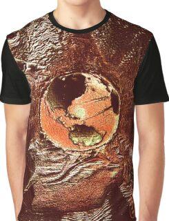 Earth Flight Graphic T-Shirt