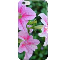 Pink flowers macro, natural background. iPhone Case/Skin