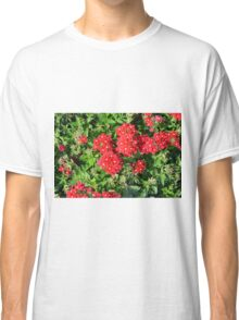 Red flowers bush. Classic T-Shirt