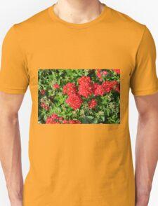 Red flowers bush. T-Shirt
