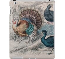 19th century artwork American Wild Turkey,  iPad Case/Skin