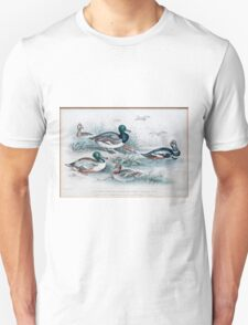 19th century artwork By J. Stewart Del containing: blue winged shoveler, Broad Bill, Teal, Harlequin Duck, Scaup duck and Red Headed Pochard  Unisex T-Shirt