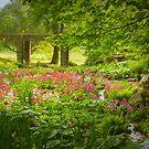 Heaven's Dell is Winterthur by Marilyn Cornwell