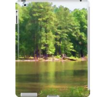 Lake Landscape iPad Case/Skin
