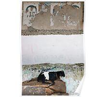 Wallscape, Cochin India Poster