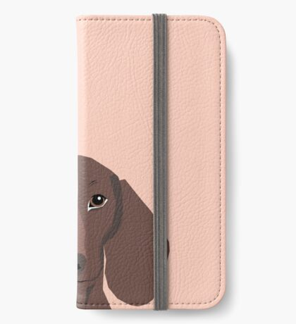 Remy - Daschund hipster dog, doxie, weiner dog, wiener dog iPhone Wallet/Case/Skin