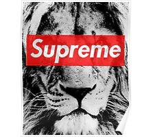 Supreme lion Poster