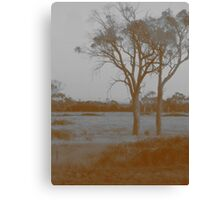 Countryside - Sepia Canvas Print