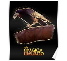 The crow of The Magic of Ireland Poster