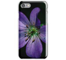 Hulk iPhone Case/Skin