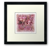 The Atlas Of Dreams - Color Plate 24 Framed Print