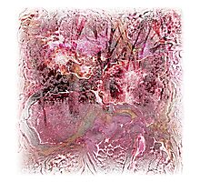 The Atlas Of Dreams - Color Plate 24 Photographic Print