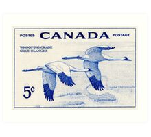 Canada postage stamp, 1955, whooping cranes Art Print