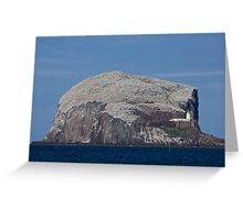 Northern Gannets on Bass Rock Scotland UK Greeting Card