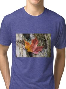 Maple leaf coloured from the Autumn over wooden trunk. Tri-blend T-Shirt