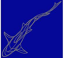 Grey shark Photographic Print